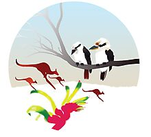 "Day 143 | 365 Day Creative Project  ""Kangaroos & Kookaburras"" Photographic Print"