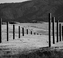 Whole Lotta Poles (B&W) by AmishElectricCo