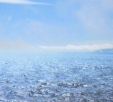 The Bay by David Denny