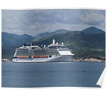 The Celebrity Silhouette Poster