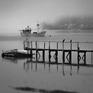 Tamar River Fog by fotosic