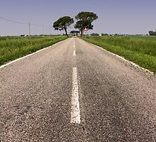 Country Road by Emmeci74