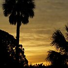 Melbourne, Florida Sunrise by Henri Bersoux