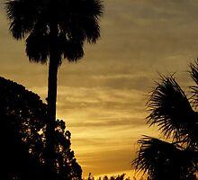 Melbourne, Florida Sunrise by Henri Bersoux