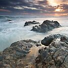 Currumbin Rising by Shelley Warbrooke