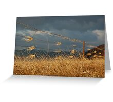 Argyll Prayer Flags in the Cloud Greeting Card