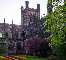 Chester Cathedral by mlphoto