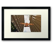 Falling To Earth Framed Print