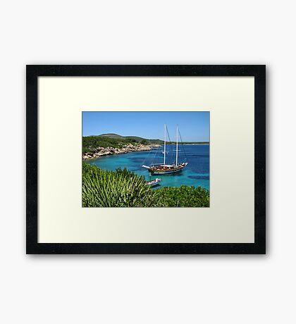 Monkey Island Framed Print