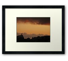 No Cage Framed Print