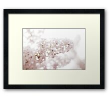 lilacs laced with rain drops~ Framed Print