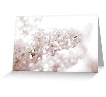 lilacs laced with rain drops~ Greeting Card