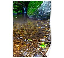 A Leaf Near a WaterFall Poster