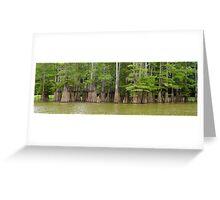 Cook's Lake Panorama Greeting Card