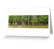 Cook's Lake Panorama Greeting Card