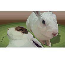 Sweet Bunnies Photographic Print
