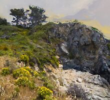Stairway to China Cove, Point Lobos, Carmel, CA by JimPavelle