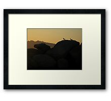 Woodpeckers from Mars Framed Print