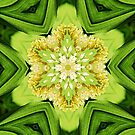 Naturally Green by Tori Snow