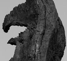 Sam the Eagle by Adam Kuehl