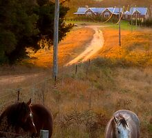 Landscape with Horses by RusticShiraz