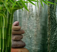 Balance and Bamboo by ntd0277