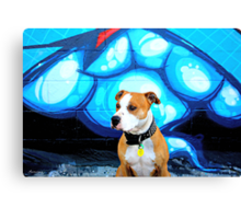 Graffiti  dog- blue Canvas Print