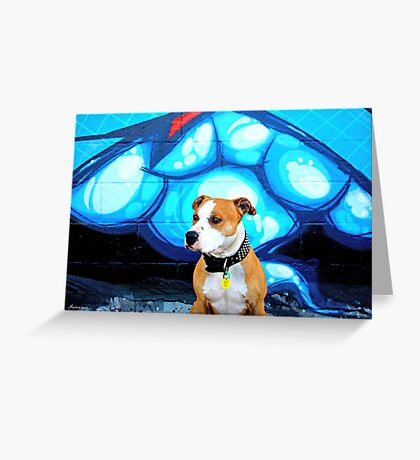 Graffiti  dog- blue Greeting Card