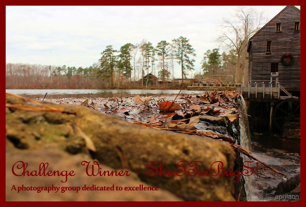 Banner - S - Challenge Winner by aprilann