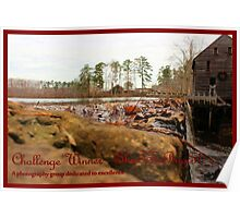 Banner - S - Challenge Winner Poster