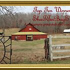 Banner - S - Top Ten Winner by aprilann