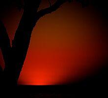 Red by fernblacker