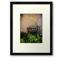 Little Meadow England Framed Print