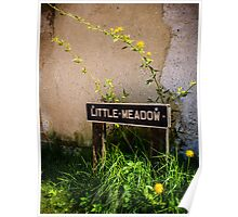 Little Meadow England Poster