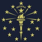 Indiana Flag by David Orr