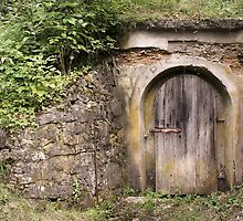 The Little Door In The Forest by Emmeci74