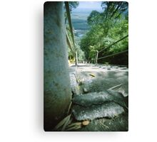 Ant's Stare Down the Stairs - Lomo Canvas Print