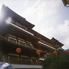 Buddha Tooth Relic Temple - Lomo by chylng