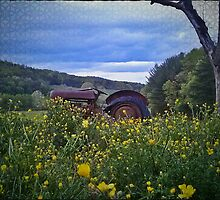 retired farmer, old rusty tractor by TNsarajean