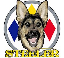 A dog named Steeler Photographic Print