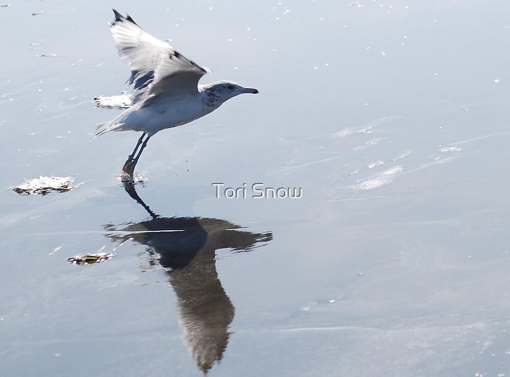 Take Off by Tori Snow