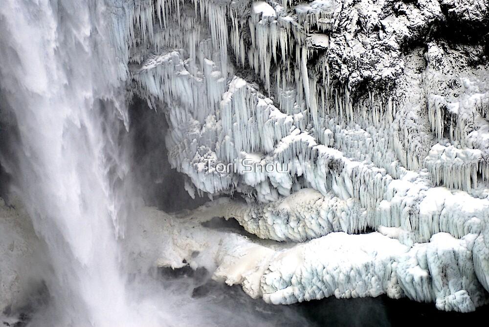 Snoqualmie Falls in Winter by Tori Snow