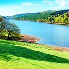 Ladybower Reservoir - Orton by Colin J Williams Photography