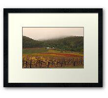 Misty Bright Autumn Vineyard Framed Print