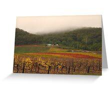 Misty Bright Autumn Vineyard Greeting Card