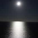 A romantic moonlight evening! by jozi1