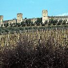 Walls and towers Monteregione from road around town 198403150027 by Fred Mitchell