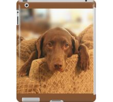 Cutie Pup - The world's Cutest Chocolate Lab iPad Case/Skin