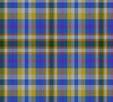 02431 Kern County, California E-fficial Fashion Tartan Fabric Print Iphone Case by Detnecs2013