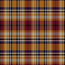 02434 Ventura County, California District Tartan Fabric Print Iphone Case by Detnecs2013